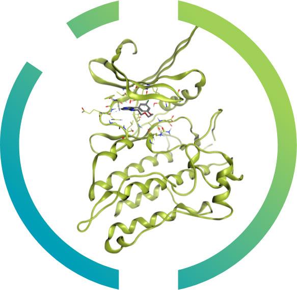 kinases-nanocyclix
