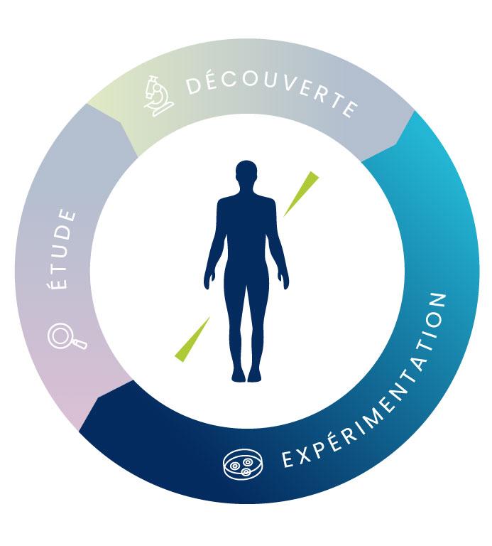 schema_technologies_simplifie-experimentation