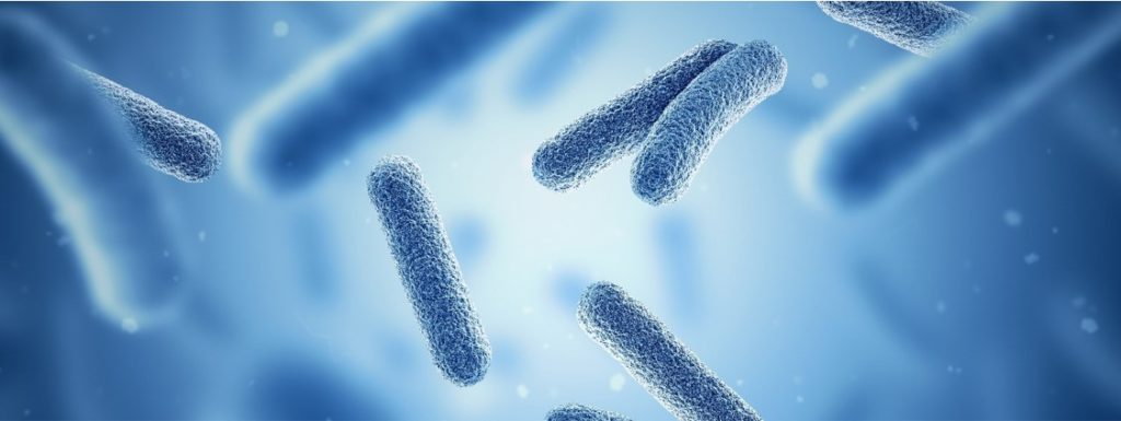 oncodesign-solo-microbiome