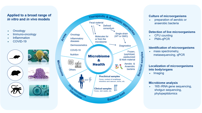 Microbiome-schéma-EN2-700