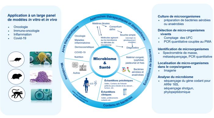 Microbiome-schéma-FR2-700