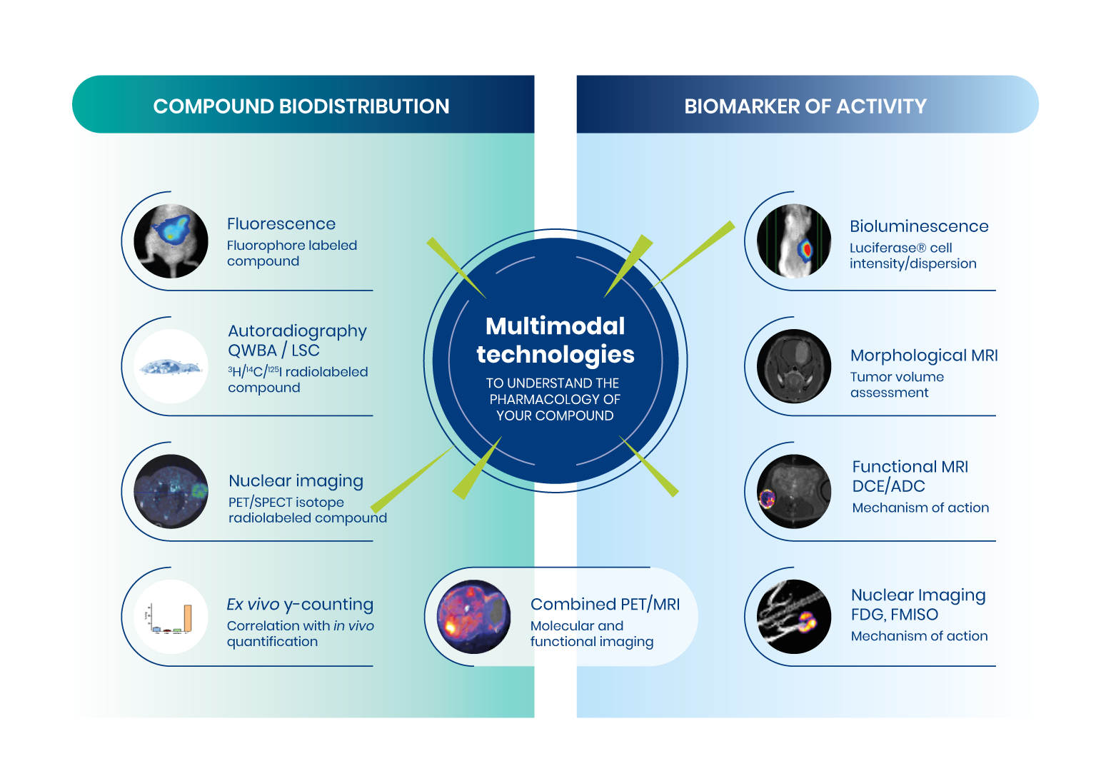 multimodal_technologies_EN-2